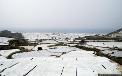 Espagne – Andalousie – Almeria | Dans l'enfer des serres